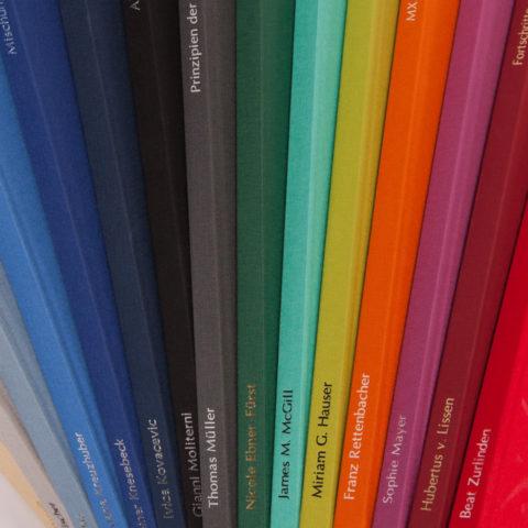 Einband Bachelorarbeit, Diplomarbeit, Masterarbeit, Buchleinen, Dissertation in den Farben Sand, Hellgrau, Graublau, Kobaltblau, Königsblau, Dunkelblau, Schwarz, Dunkelgrau, Dunkelgrün, Mint, Grasgrün, Orange, Pink, Dunkelrot und Rot